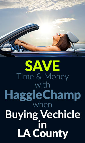 SAVE Time & Money with HaggleChamp when Buying Vechicle in LA County